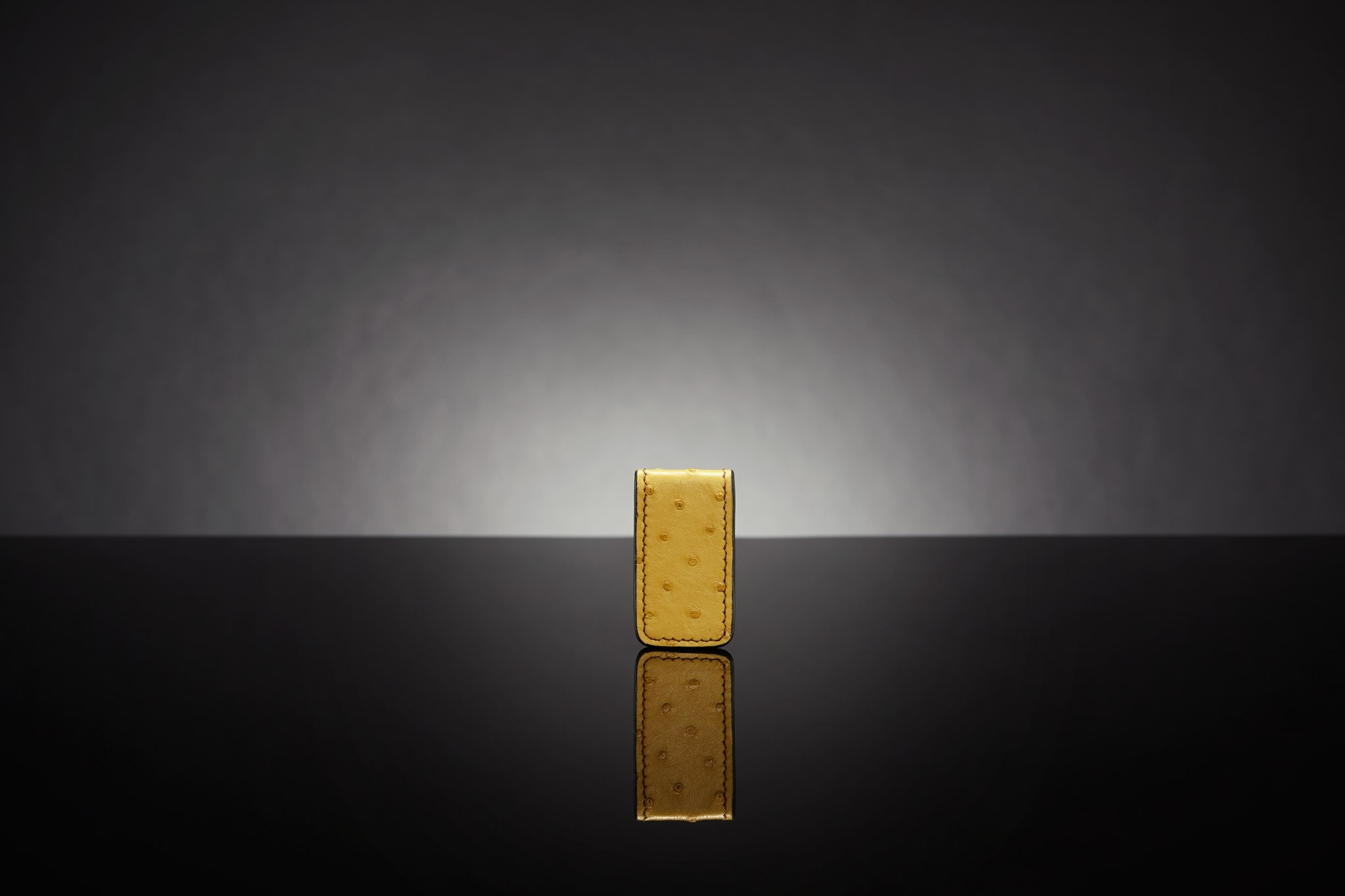 MINI MONEY CLIP